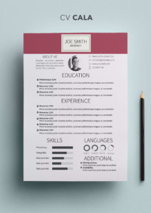 the second job interview resume templates