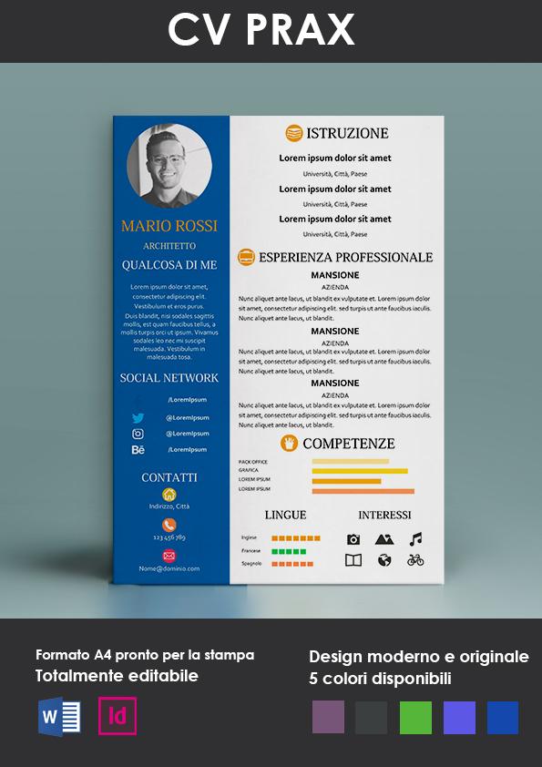 Modello Curriculum Da Compilare Modello Curriculum