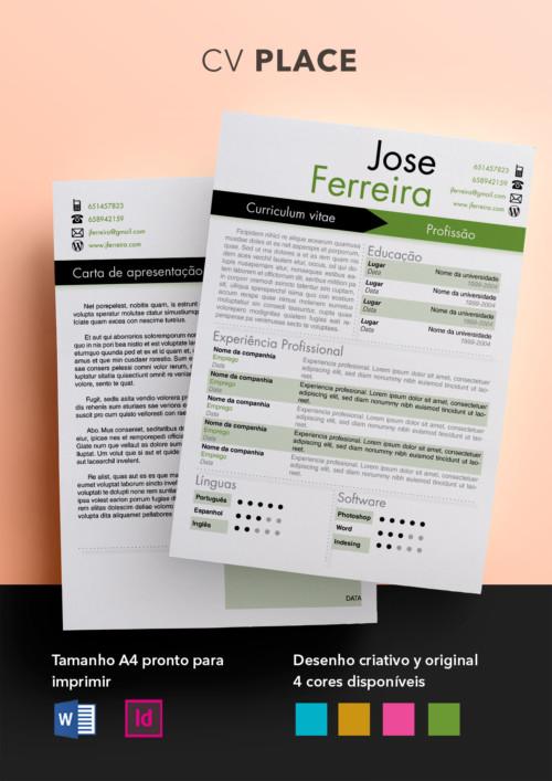 Exemplos De Curriculum Modelo Curriculum