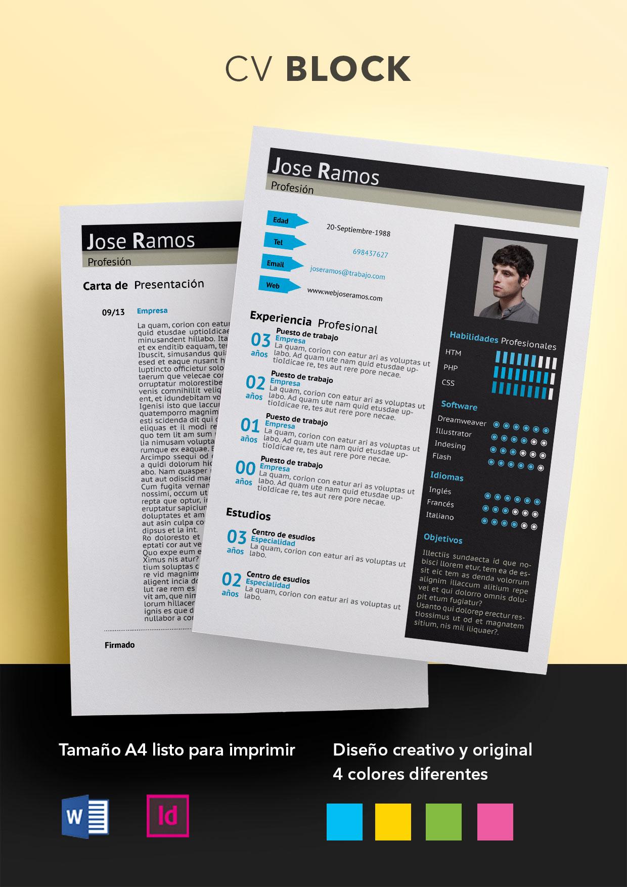 Curriculum Vitae modelo Block | Plantillas de currículum