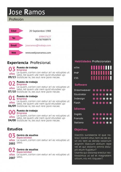 Plantilla CV modelo Block Rosa