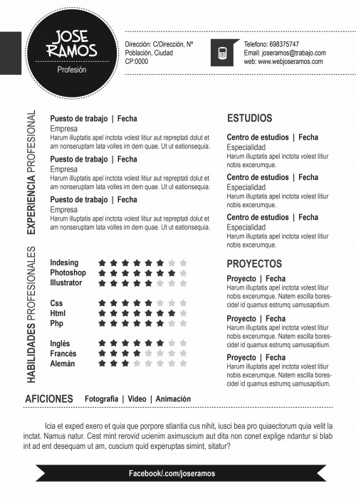 Plantilla CV modelo Circle Negro