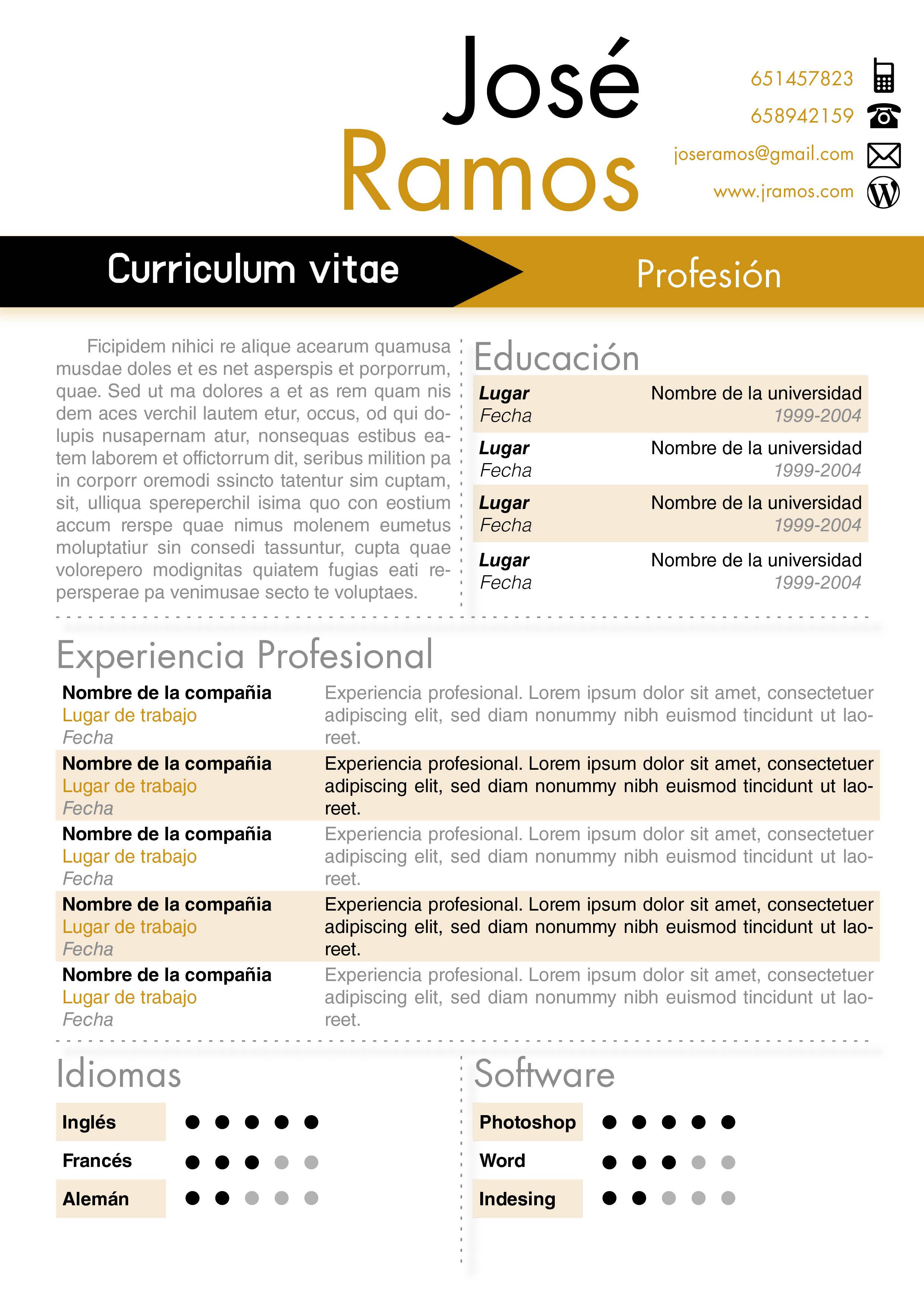 modelo de curriculum vitae en word hcsclub.tk