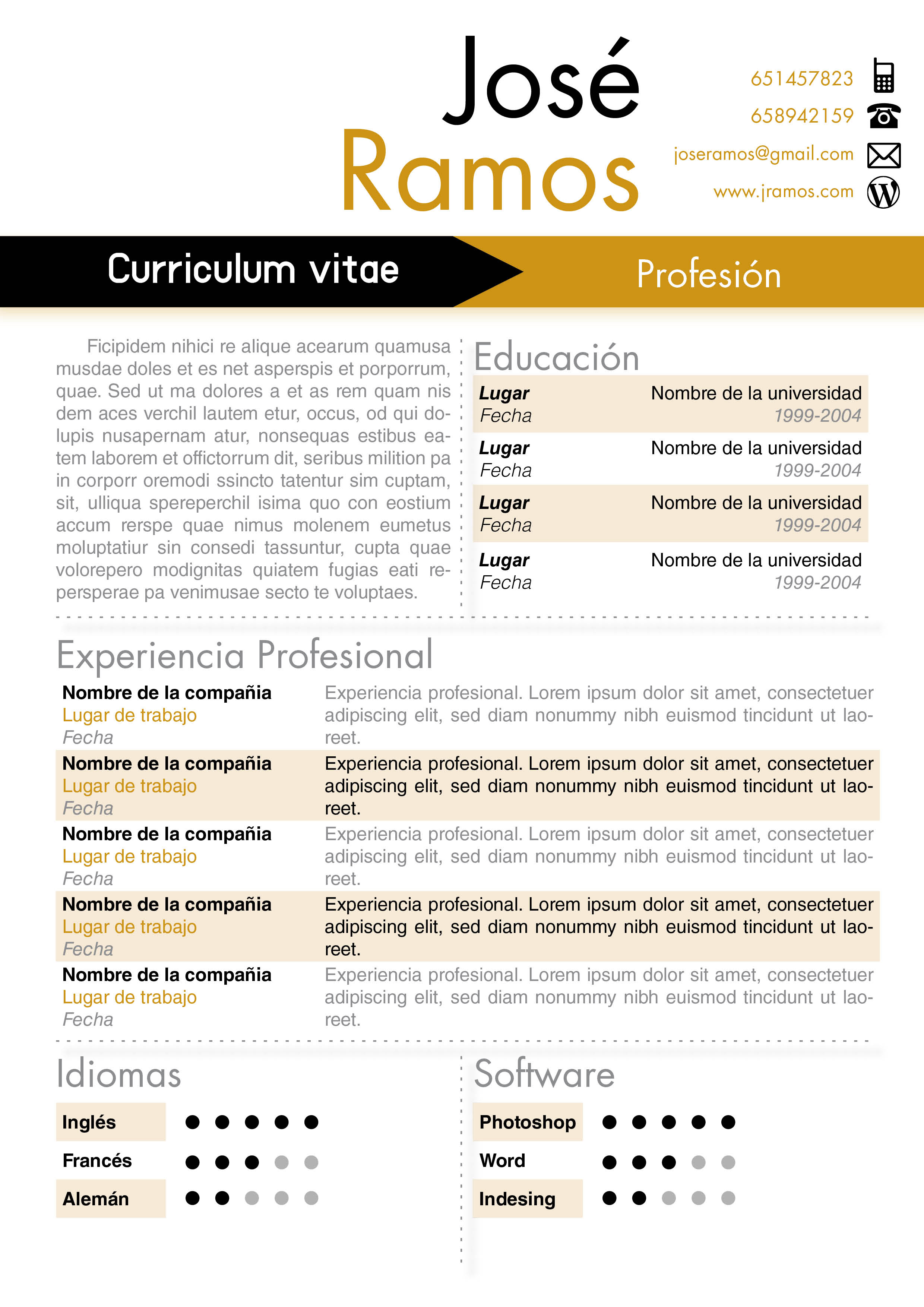 modelos de curriculum vitae word para completar