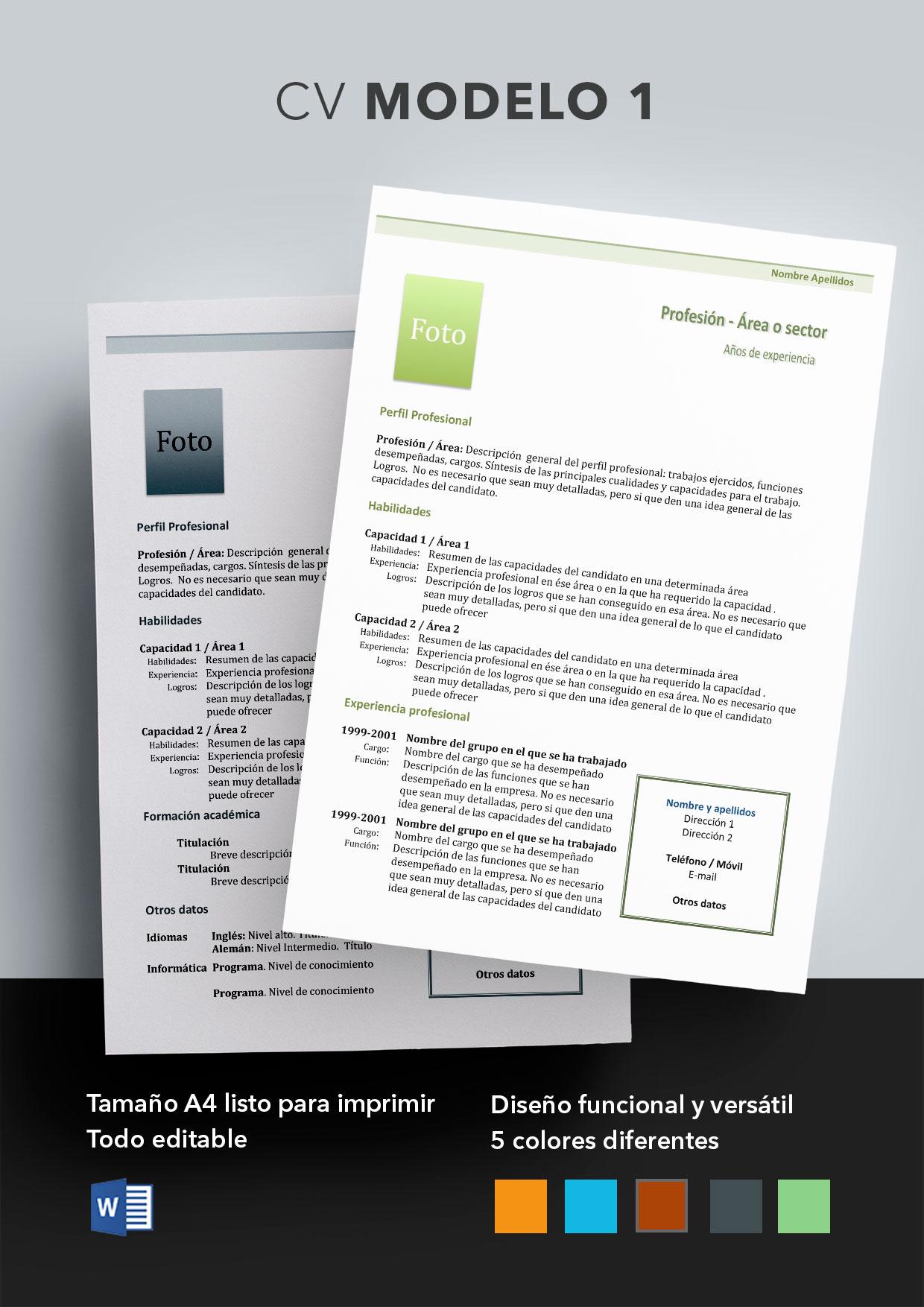 Curriculum vitae Modelo 1 | Plantillas de curriculum