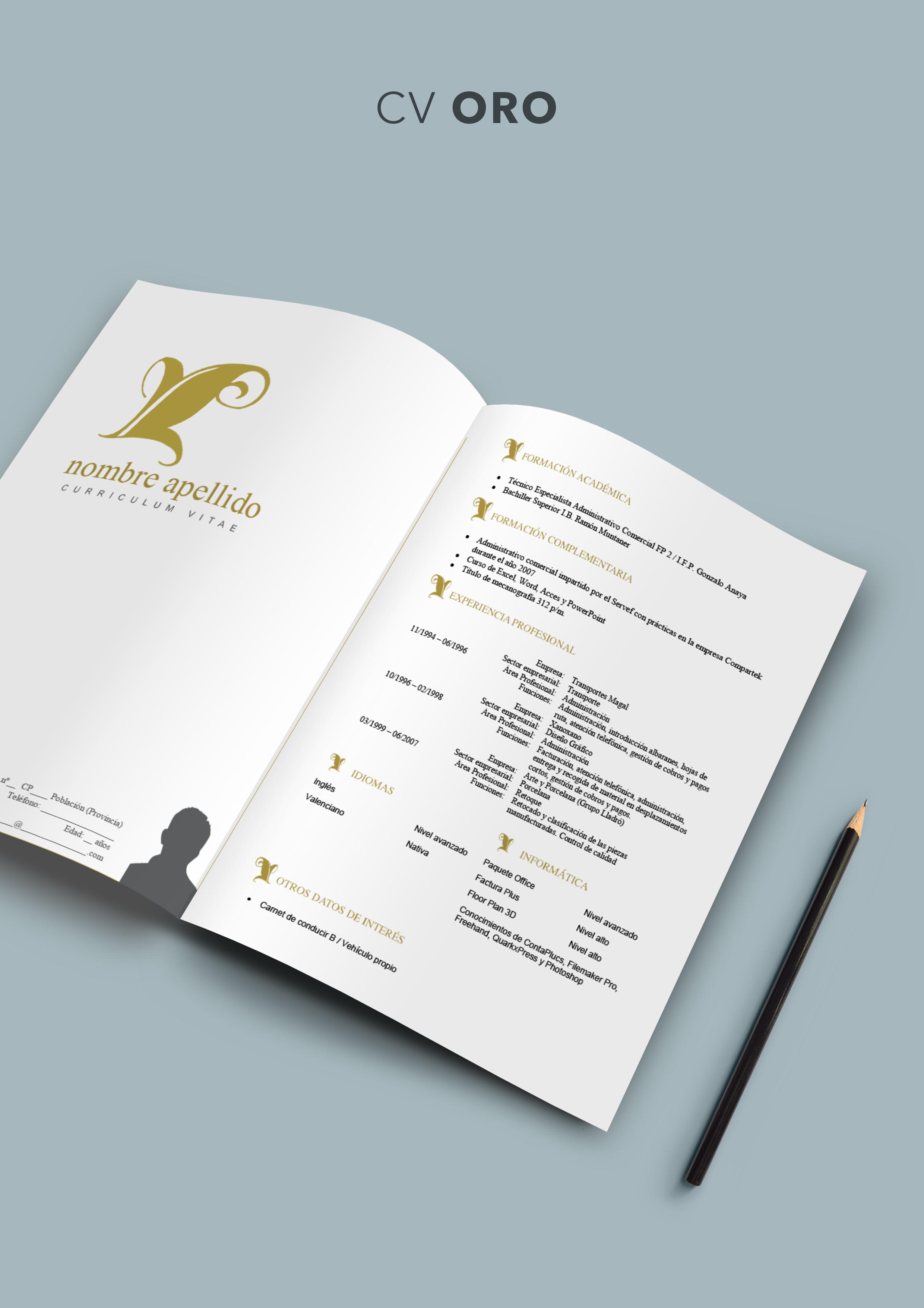 Curriculum Vitae modelo Oro   Plantillas de Curriculum