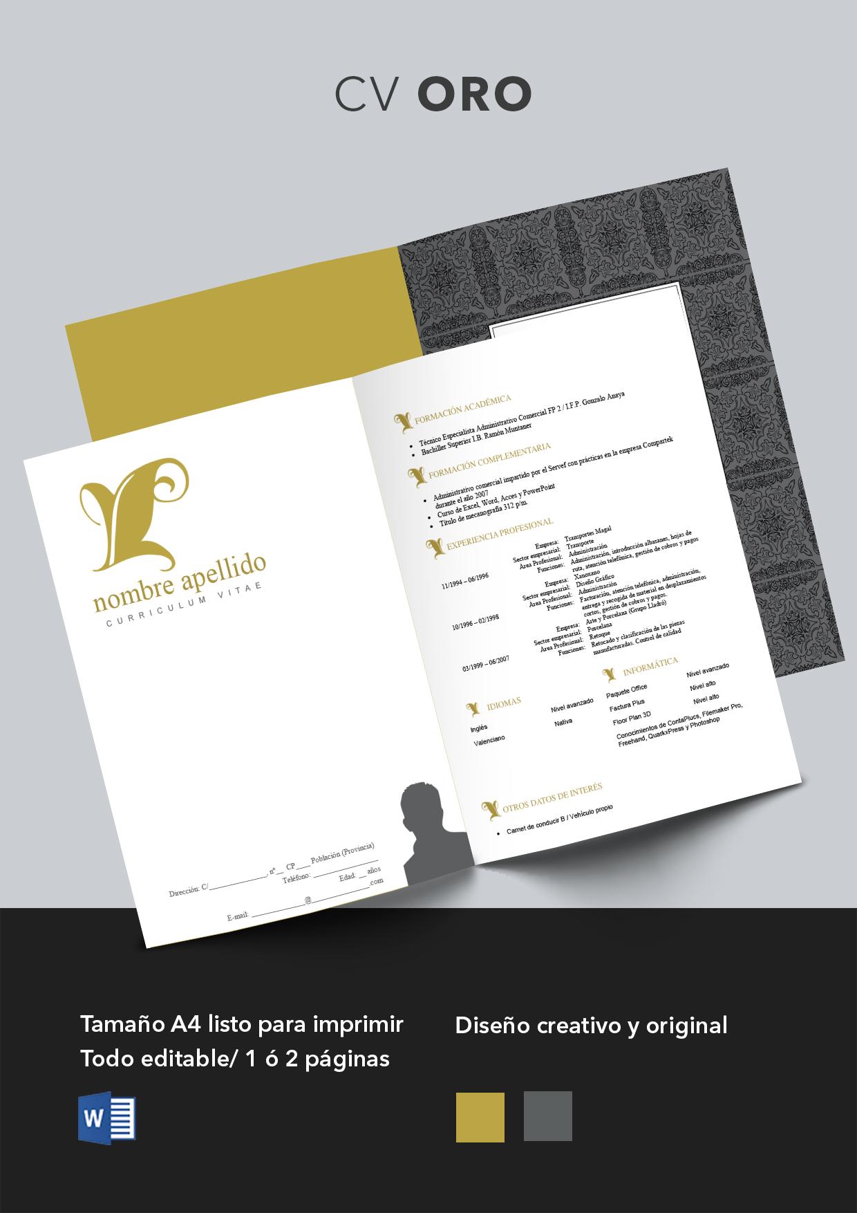 Curriculum Vitae modelo Oro | Plantillas de Curriculum