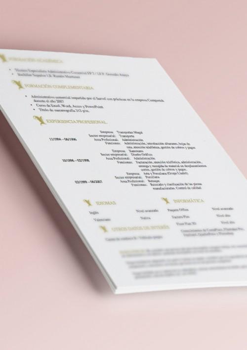 plantilla de curriculum vitae modelo oro información personal