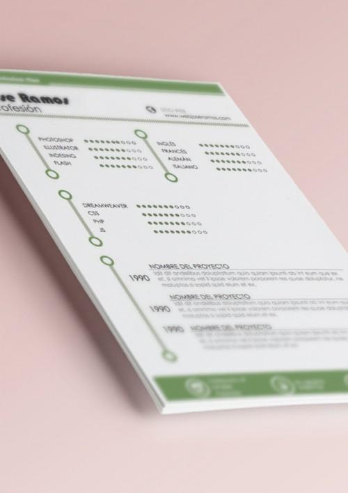 CV metro verde conocimientos