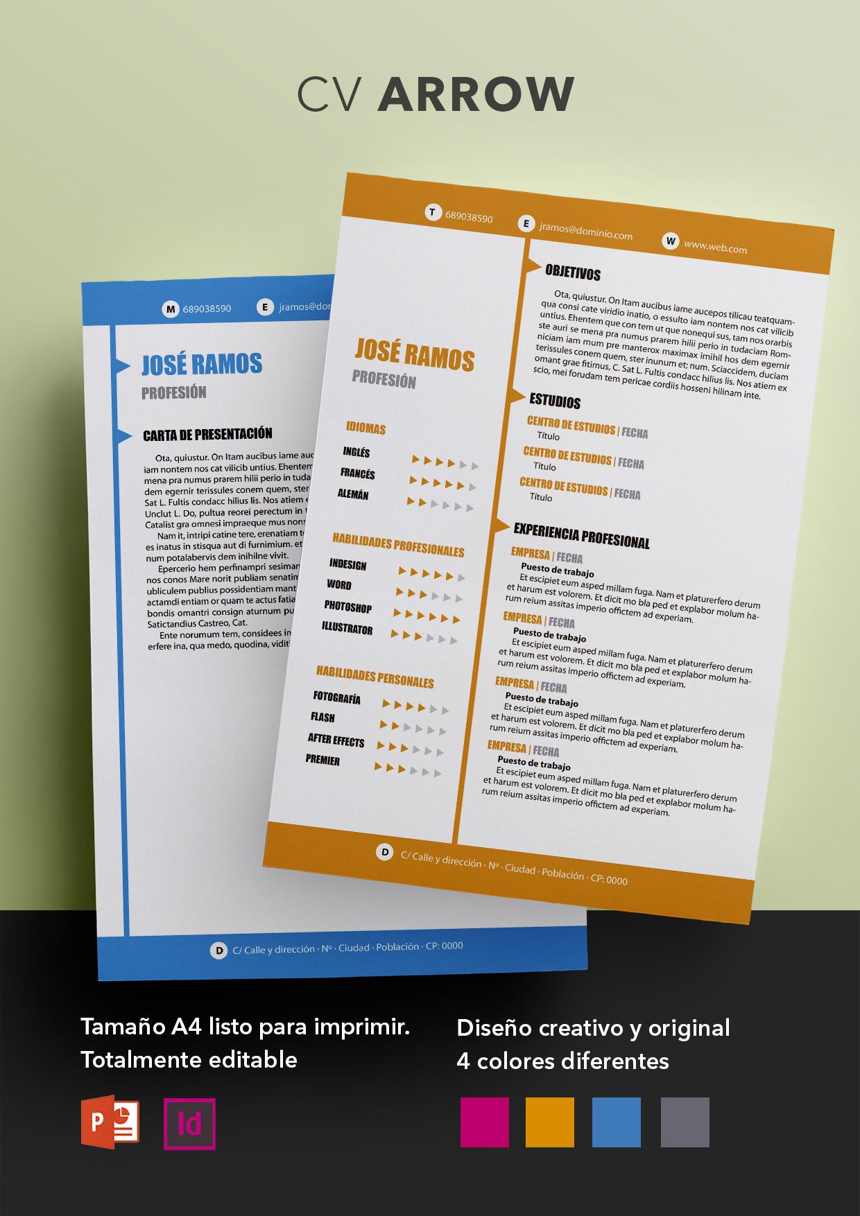 Curriculum Vitae modelo Arrow | Plantillas de currículum