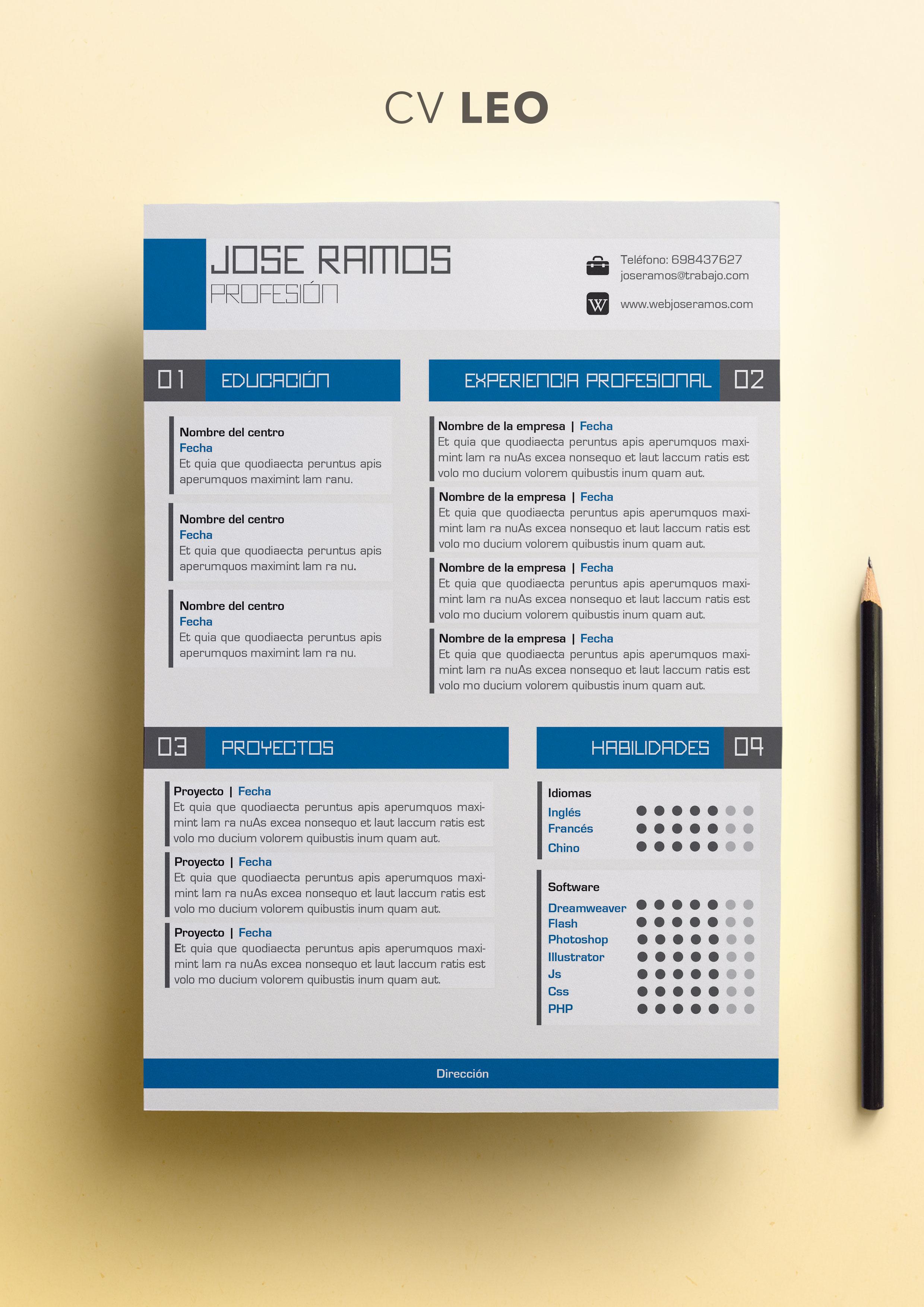 Curriculum Vitae modelo Leo | Plantillas de currículum