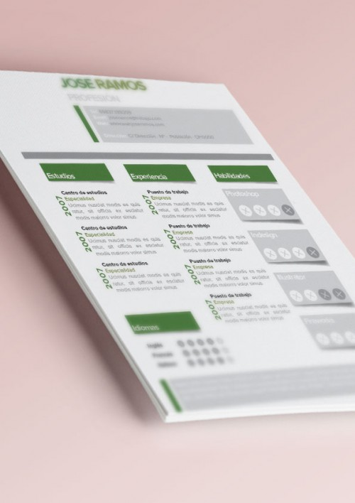 Plantilla curriculum tags verde