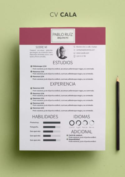 Modelos Y Plantillas De Curriculum Vitae Modelo Curriculum