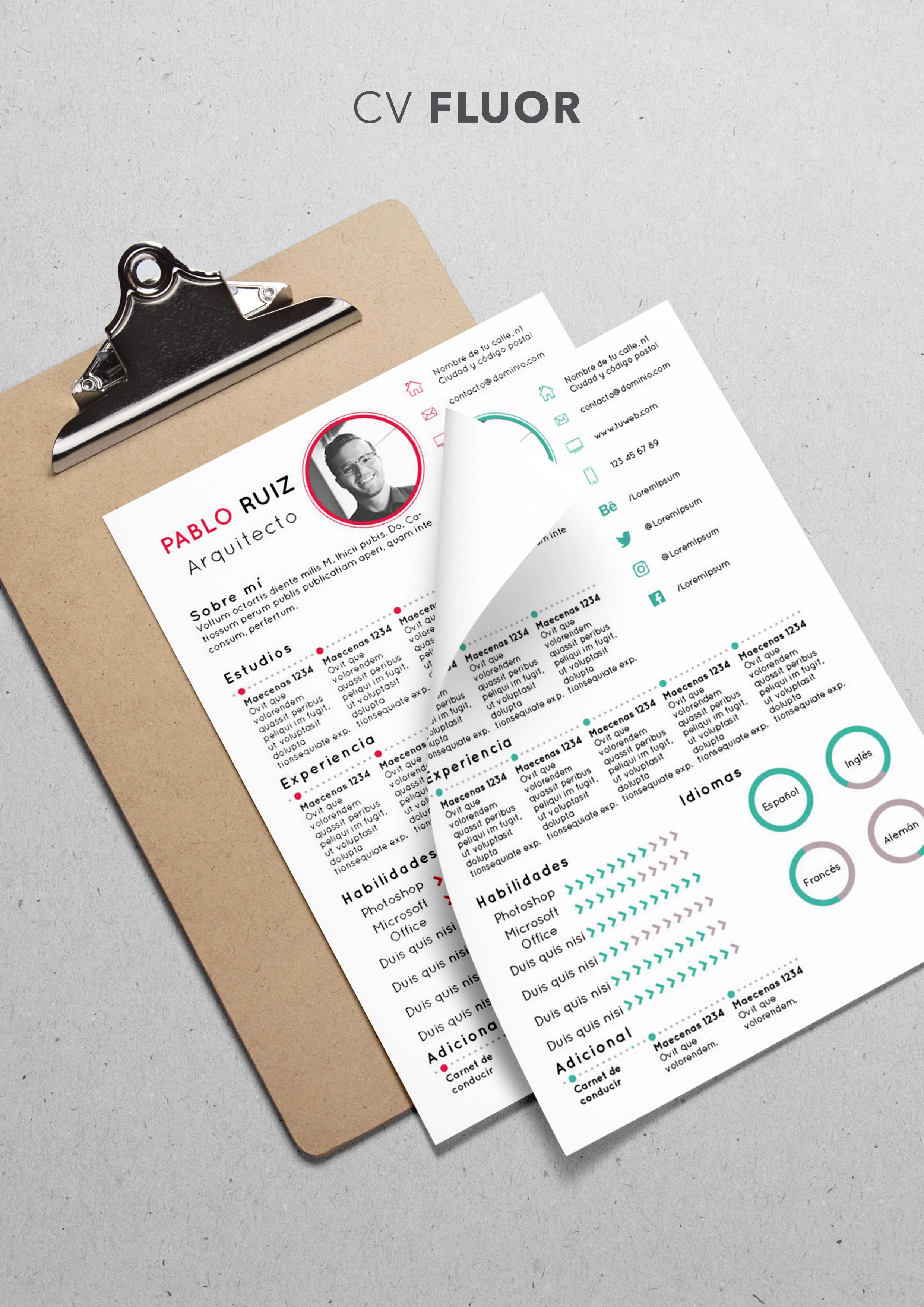 Curriculum Vitae modelo Fluor | Plantillas de currículum