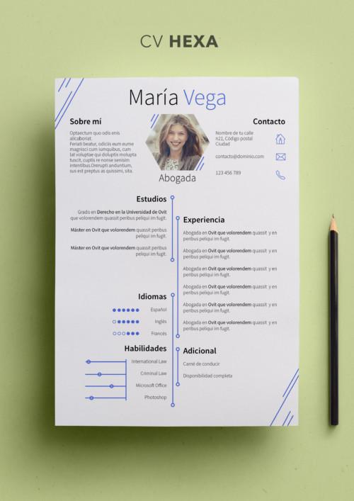 El Portfolio Crear Un Buen Portfolio Modelo Curriculum
