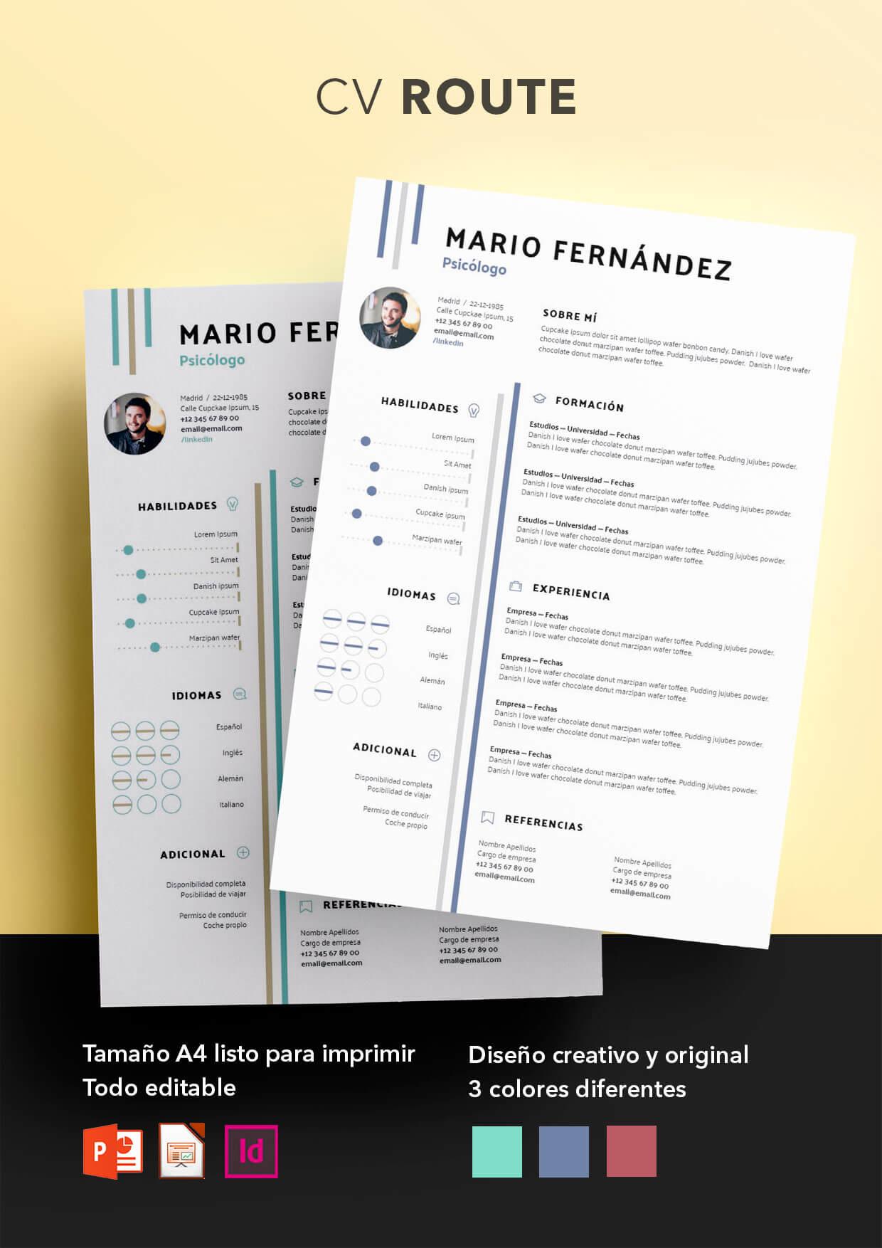 curriculum vitae modelo 2019 argentina