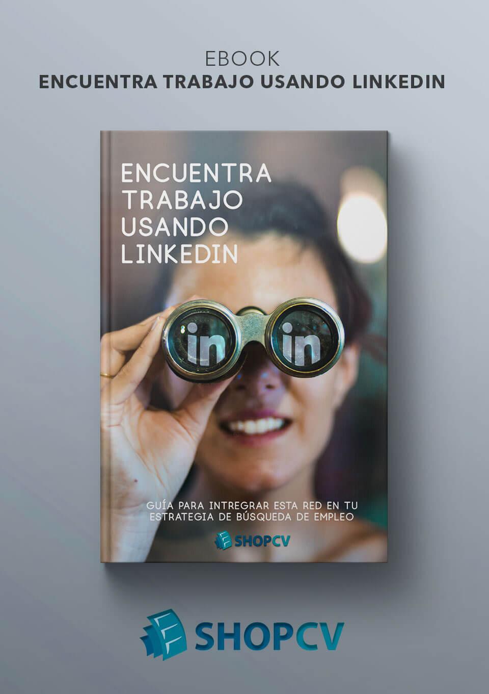 Curriculum en inglés con Linkedin | Modelo Curriculum